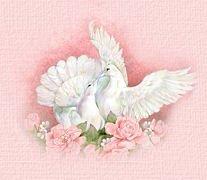 ابتسامة المراة.... doves.jpg