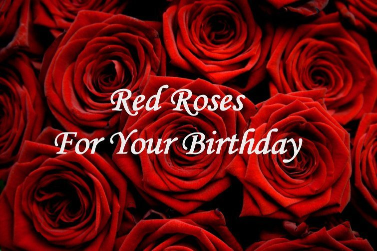 redroses forbirthday - Happy Birthday Dear H.W sis