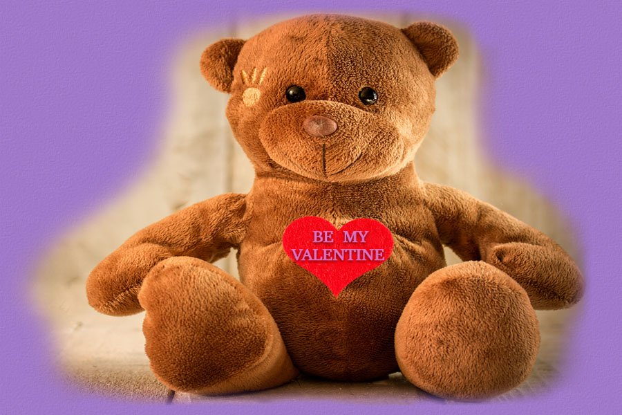 Beary Happy Valentines Day