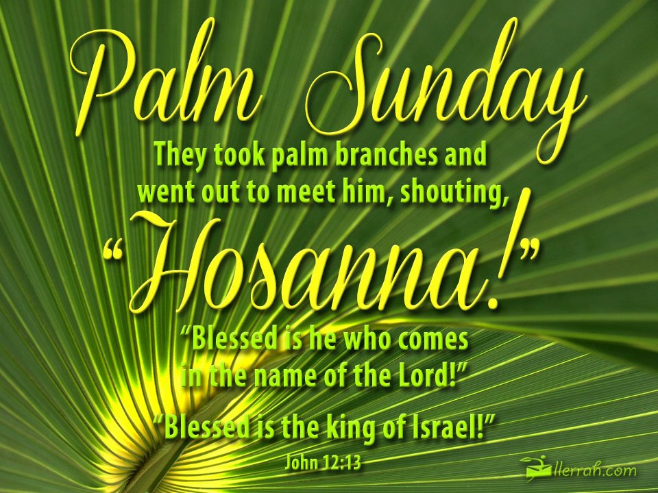 palm sunday What is palm sunday why did the people put palm branches before jesus during the triumphal entry.