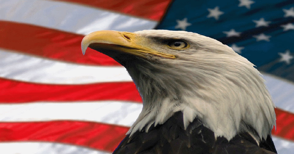 america the beautiful america the beautiful,Are You Free This Weekend Meme
