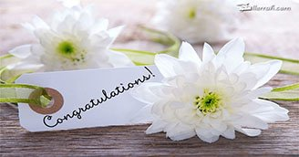 Congratulations to You! (Postcard)