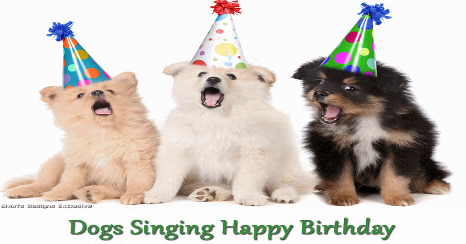 Birthday Ecards Dogs Singing ~ Dogs singing happy birthday