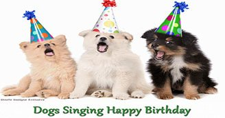 Dogs Singing Happy Birthday