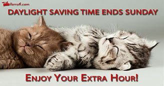 Enjoy the Extra Hour