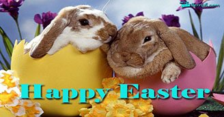 Happy Easter! (Postcard)