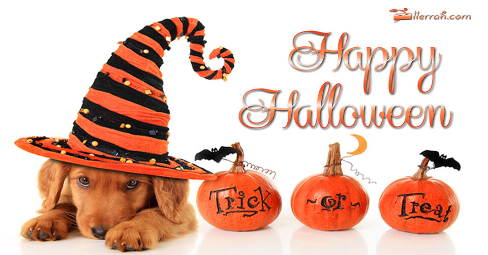 have a happy halloween dog free clipart images dog free clipart images