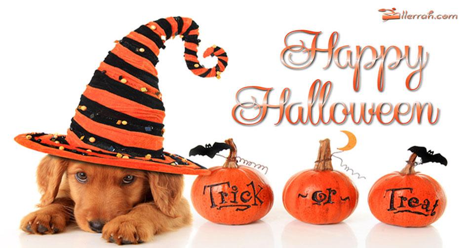 have-a-happy-halloween.jpg