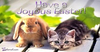 Have a Joyous Easter! (Postcard)